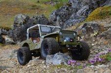 Willys Jeep (244).jpg