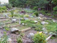 Rock Garden 3.jpg